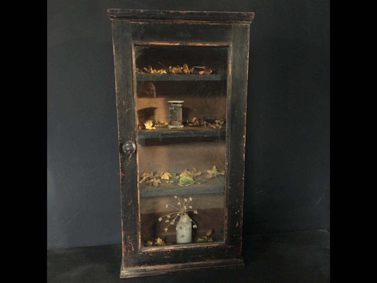Black Pine Curiosity Cabinet