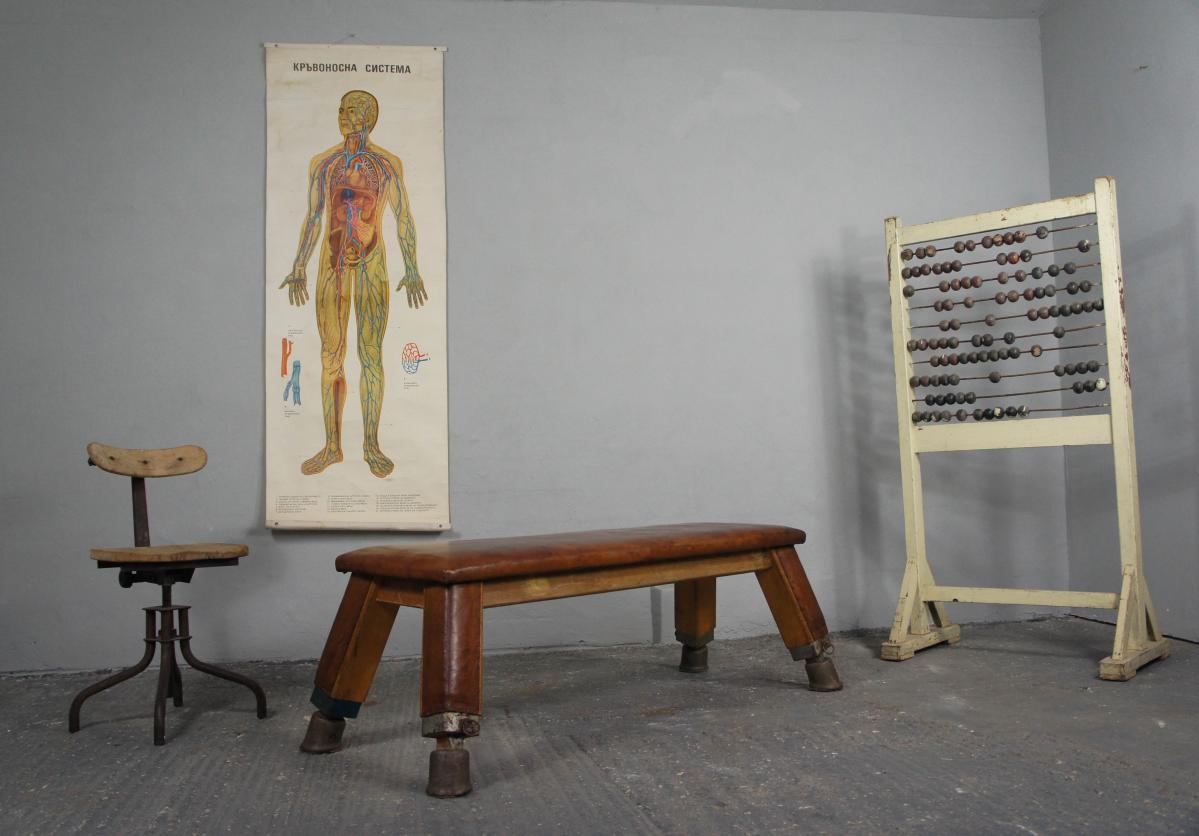 Vintage Anatomy Poster
